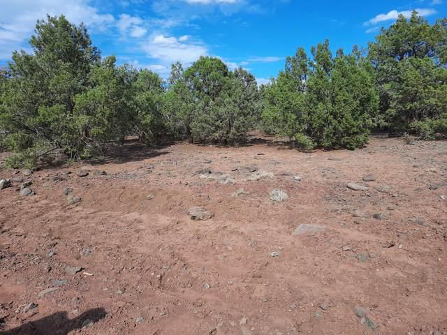 3093 W Cumberland Road, Ash Fork, AZ 86320 (#1033533) :: Shelly Watne