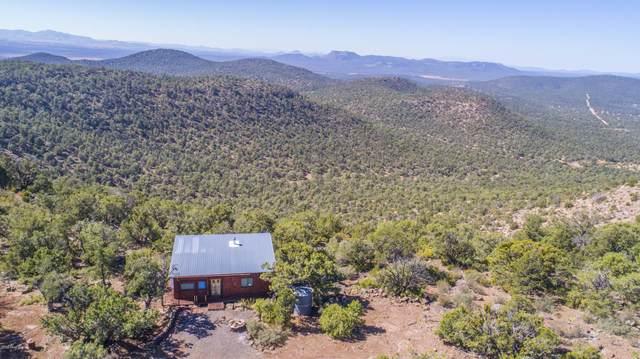 45900 N Klinedog Trail, Seligman, AZ 86337 (#1033583) :: Shelly Watne