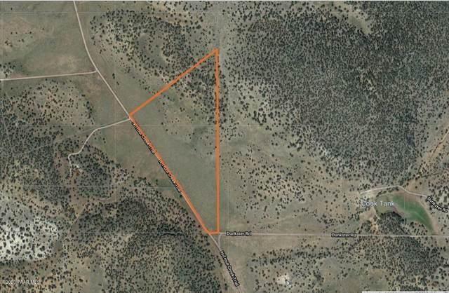 38 N Trout Creek Trail, Seligman, AZ 86337 (#1033609) :: Shelly Watne