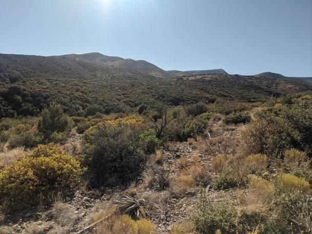 12337 E Jacobs (Lot C) Road, Mayer, AZ 86333 (#1033629) :: Shelly Watne