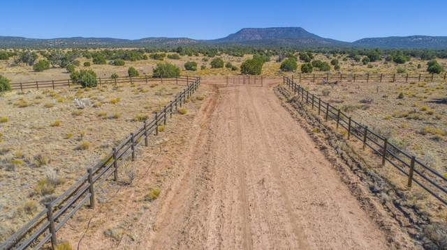 53750 Wrangler Ridge Road, Seligman, AZ 86337 (#1033669) :: Shelly Watne