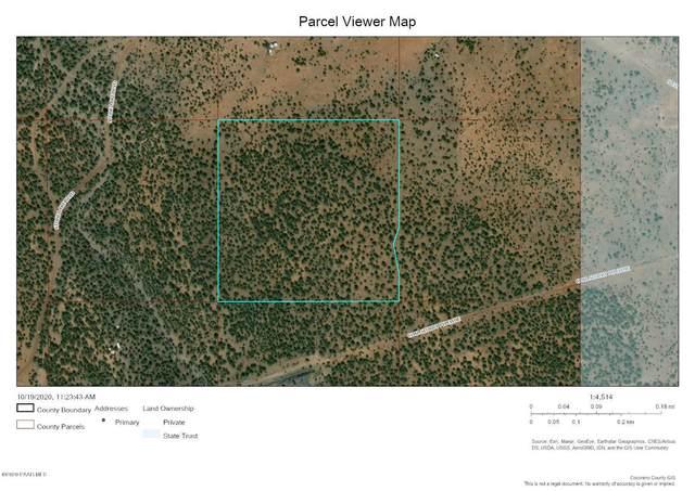 572 Westwood Racnch, Ash Fork, AZ 86320 (#1033696) :: Shelly Watne