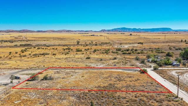1650 Granite Creek Lane, Chino Valley, AZ 86323 (#1033713) :: Shelly Watne