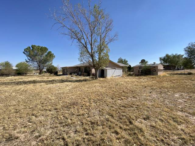 3360 Quail Trail, Chino Valley, AZ 86323 (#1033969) :: Shelly Watne