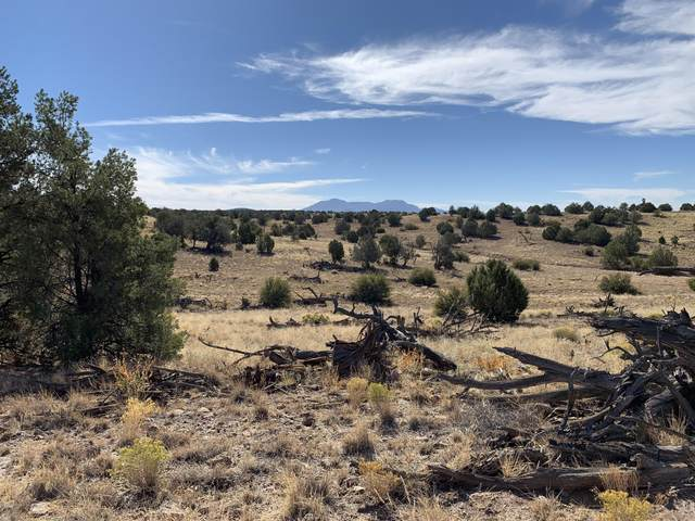 7601 W Rambling Road, Prescott, AZ 86305 (#1034088) :: Shelly Watne