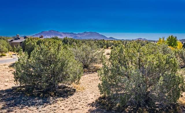 15070 N Meander Mountain Way, Prescott, AZ 86305 (#1034148) :: Shelly Watne