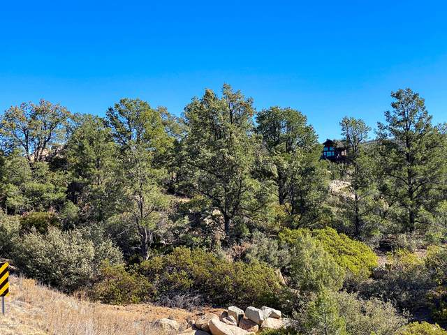 6045 W Frederick (Lot 156) Road, Prescott, AZ 86305 (#1034558) :: Prescott Premier Homes | Coldwell Banker Global Luxury