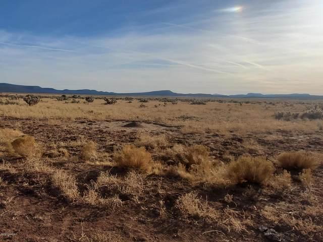 0 Tin Star Trail, Seligman, AZ 86337 (#1034559) :: Prescott Premier Homes | Coldwell Banker Global Luxury