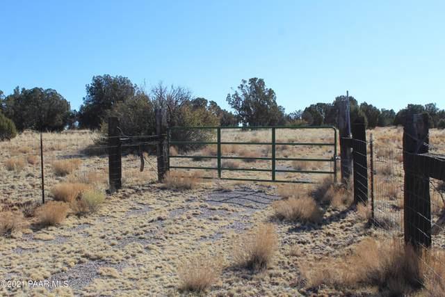 41665 W Antelope Run Road, Seligman, AZ 86337 (#1035587) :: Shelly Watne