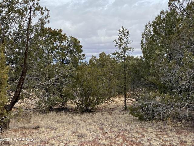 Lot 191 Antelope Valley Ranches, Seligman, AZ 86337 (MLS #1035589) :: Conway Real Estate