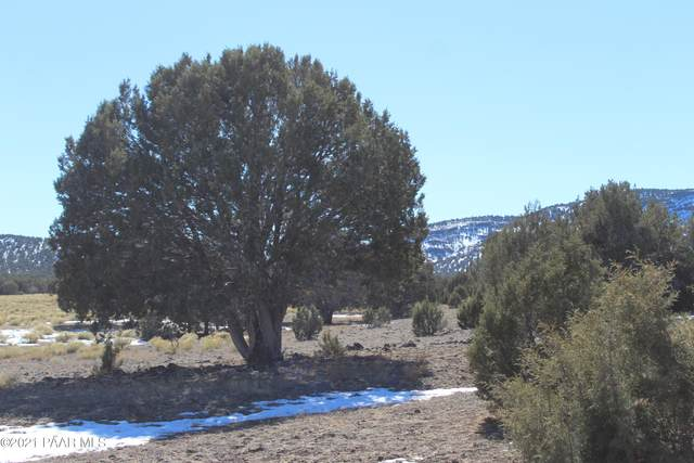 301 Olivas Alone, Seligman, AZ 86337 (#1035847) :: Shelly Watne