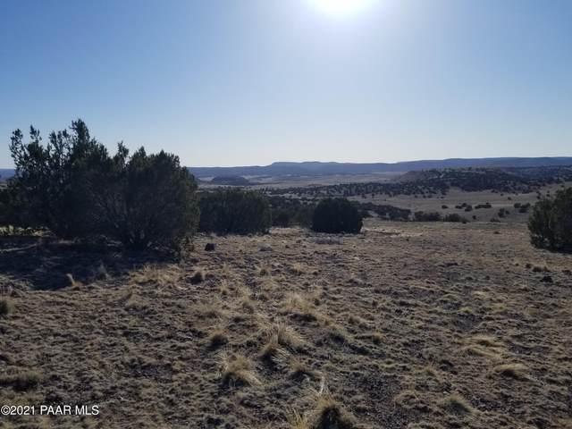 437 Sierra Verde Ranch, Seligman, AZ 86337 (#1036408) :: Shelly Watne