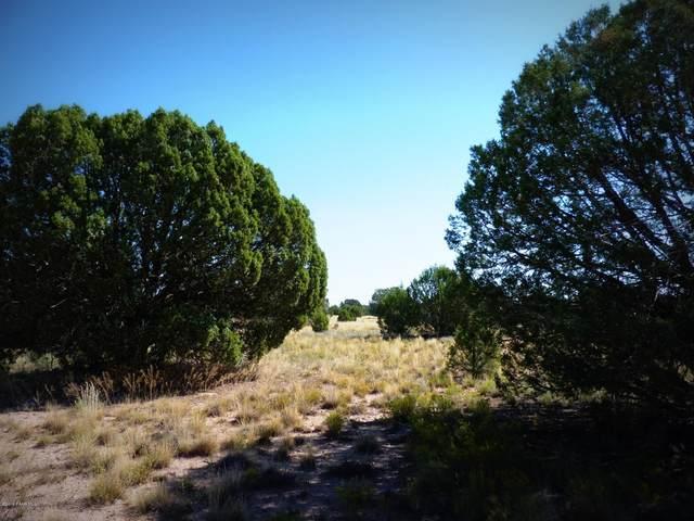 027a N Upper Verde Trail, Paulden, AZ 86334 (MLS #1036934) :: Conway Real Estate