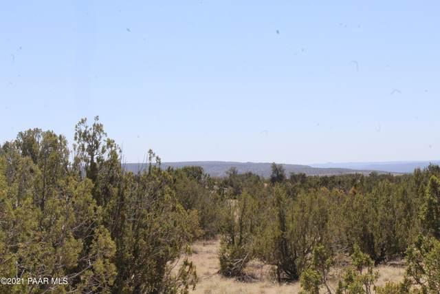 26797 W Fort Rock Road, Seligman, AZ 86337 (#1037338) :: Shelly Watne