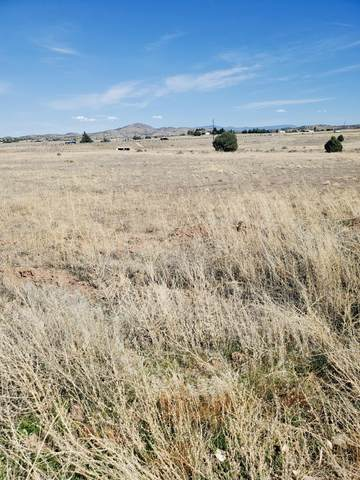 Parcel ''C N Roberts Road, Paulden, AZ 86334 (#1037500) :: Shelly Watne