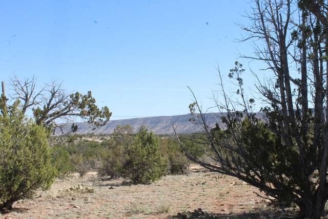 29545 W Rock Ridge Road, Seligman, AZ 86337 (#1037527) :: Shelly Watne