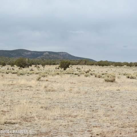 40575 W Scout Trail, Seligman, AZ 86337 (#1037549) :: Shelly Watne