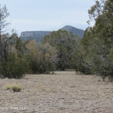 0 N Rancheria Road, Seligman, AZ 86337 (#1037550) :: Shelly Watne