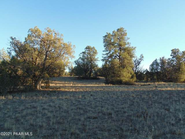 359 Sierra Verde Ranch, Seligman, AZ 86337 (#1037576) :: Prescott Premier Homes | Coldwell Banker Global Luxury