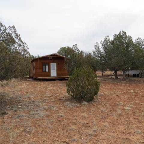 43125 N Trout Creek Trail, Seligman, AZ 86337 (#1037624) :: Prescott Premier Homes | Coldwell Banker Global Luxury