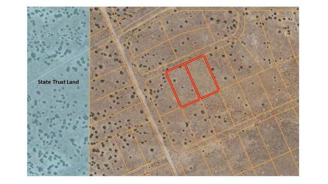 28845 W Datil Lane, Seligman, AZ 86337 (#1037631) :: Prescott Premier Homes | Coldwell Banker Global Luxury