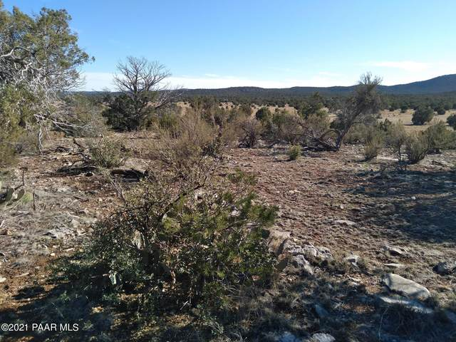 54496 Calle Reposa, Seligman, AZ 86337 (#1037850) :: Shelly Watne