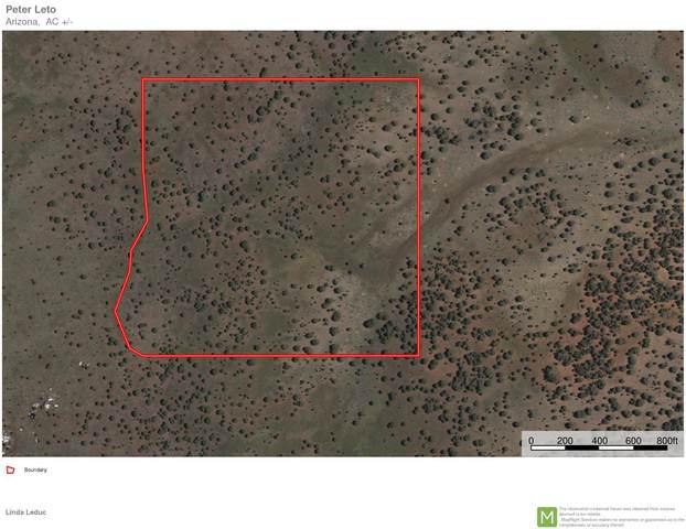Lot 628 Westwood Ranch, Ash Fork, AZ 86320 (#1038158) :: Shelly Watne