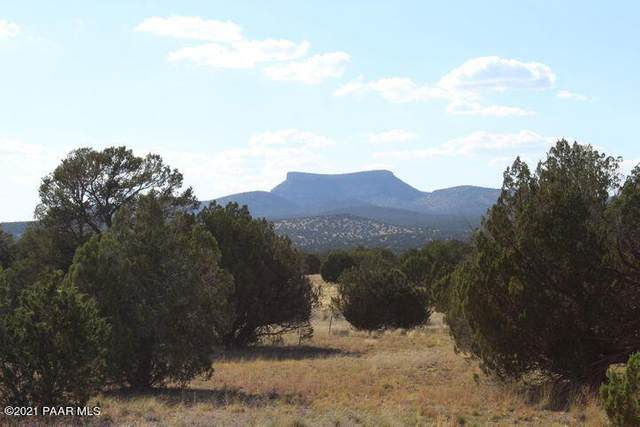 Lot 782 Painted Horse Trail, Seligman, AZ 86337 (#1038867) :: Prescott Premier Homes   Coldwell Banker Global Luxury