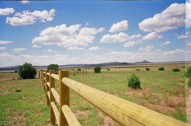 53750 Wrangler Ridge Road, Seligman, AZ 86337 (#1039178) :: Shelly Watne