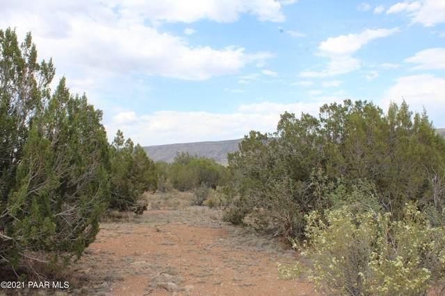 30386 W Basconia Lane, Seligman, AZ 86337 (MLS #1039218) :: Conway Real Estate