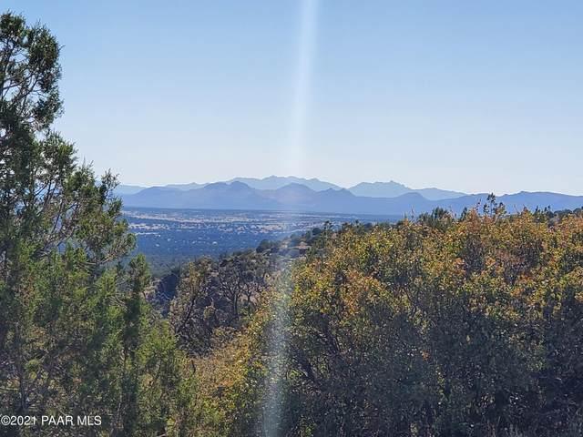 1339 Peaceful View, Seligman, AZ 86337 (#1039404) :: Shelly Watne