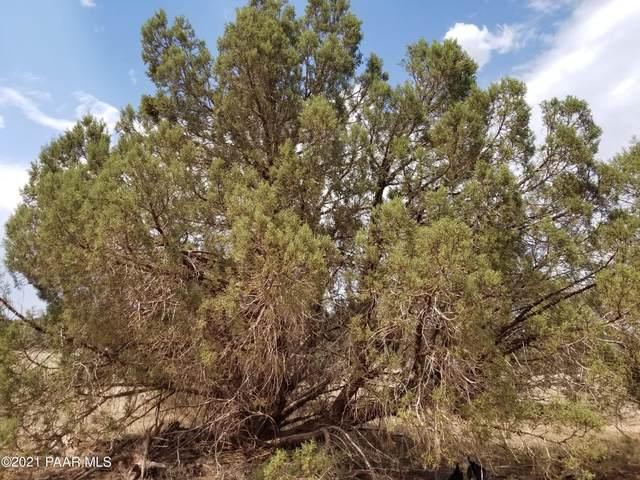 1386 W Canyon Road, Ash Fork, AZ 86320 (#1039837) :: Shelly Watne