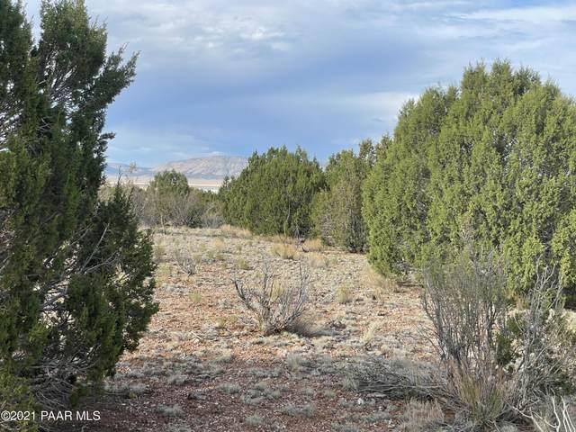 34138 W Vidrio Road, Seligman, AZ 86337 (#1039998) :: Shelly Watne