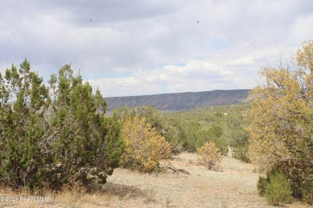 56406 N Bridge Canyon Parkway, Seligman, AZ 86337 (#1040320) :: Shelly Watne