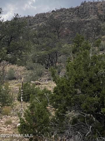 54470 N Paintbrush Lane, Seligman, AZ 86337 (#1040520) :: Shelly Watne