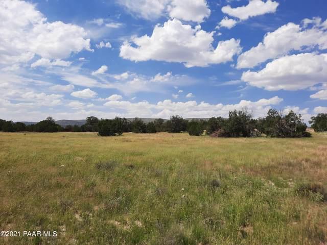 53690 N Bridge Canyon Parkway, Seligman, AZ 86337 (#1042044) :: Shelly Watne
