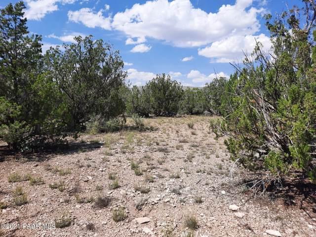53730 N Bridge Canyon Parkway, Seligman, AZ 86337 (#1042045) :: Shelly Watne