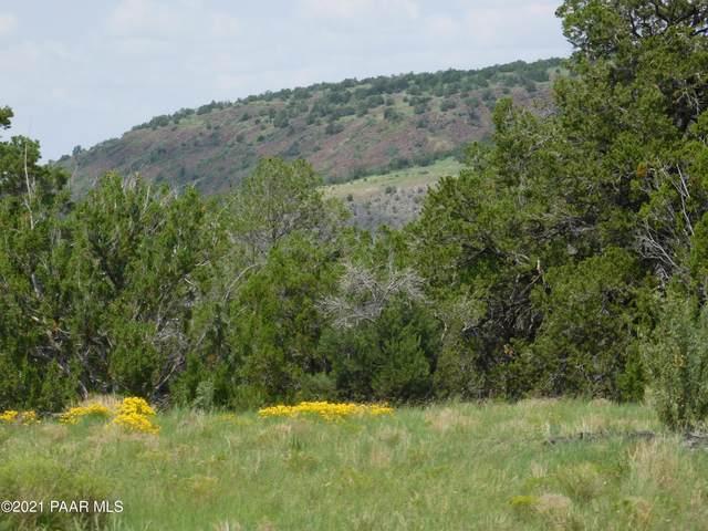 1319 W Canvasback Trail, Williams, AZ 86046 (#1042204) :: Prescott Premier Homes | Coldwell Banker Global Luxury