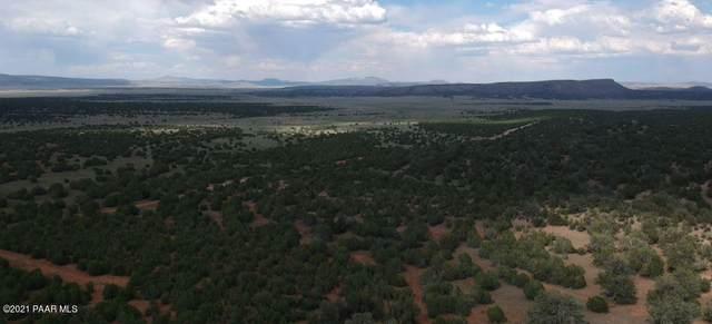 1288 Sierra Verde Ranch, Seligman, AZ 86337 (#1042446) :: Shelly Watne