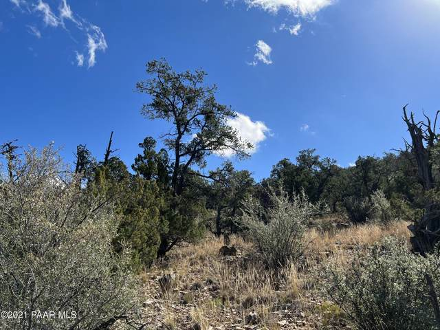 4795 W Hidden Canyon Road, Chino Valley, AZ 86323 (MLS #1042961) :: Conway Real Estate