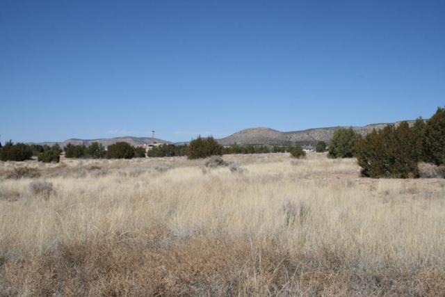 690 W Gina Marie Boulevard, Paulden, AZ 86334 (#976356) :: The Kingsbury Group