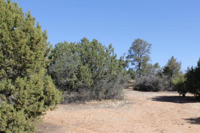 5700 W Almosta Ranch, Prescott, AZ 86305 (MLS #978406) :: Conway Real Estate
