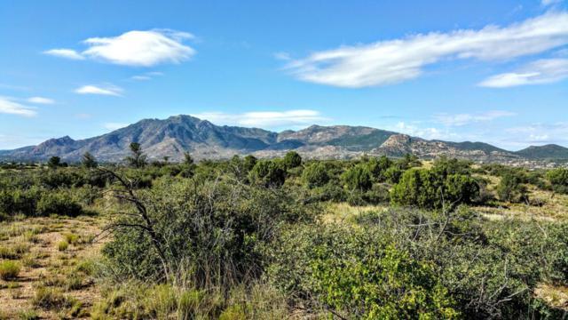 11445 N Arrow Ranch Road, Prescott, AZ 86305 (#989238) :: The Kingsbury Group