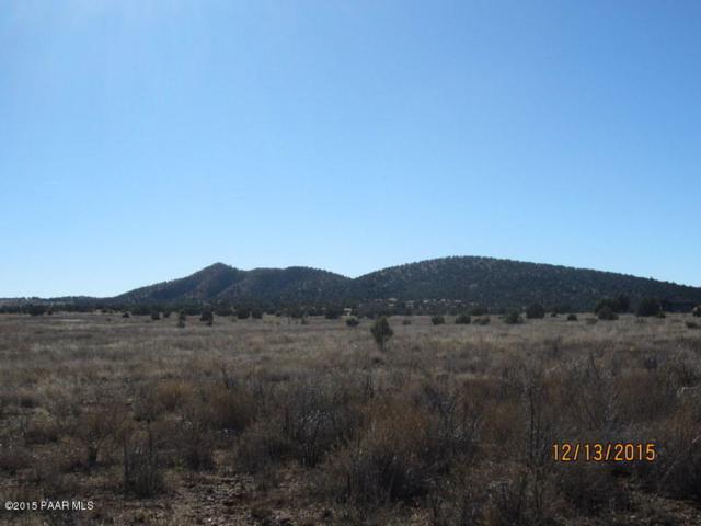 21240 N Ridgeview Road, Paulden, AZ 86334 (#991639) :: HYLAND/SCHNEIDER TEAM