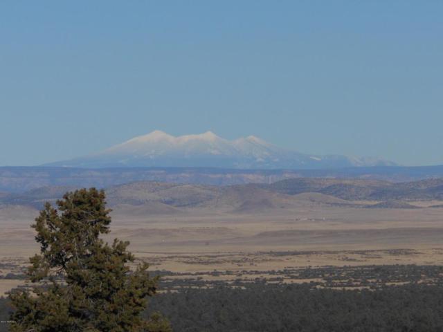 2799 W Levie Lane, Prescott, AZ 86305 (#1000120) :: West USA Realty of Prescott