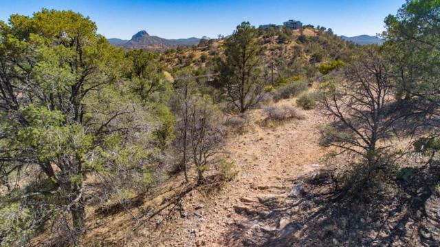 2020 N Holly Drive, Prescott, AZ 86305 (#1004395) :: HYLAND/SCHNEIDER TEAM