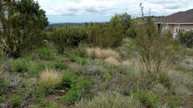 1163 Valor Road, Prescott, AZ 86305 (#1005392) :: The Kingsbury Group
