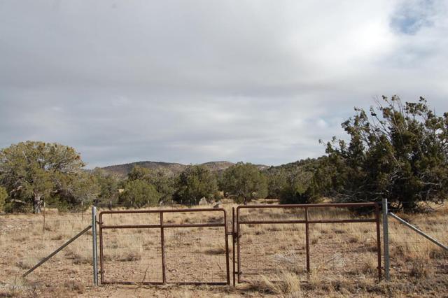 5201 Dillon Wash Road, Prescott, AZ 86305 (#1009687) :: The Kingsbury Group