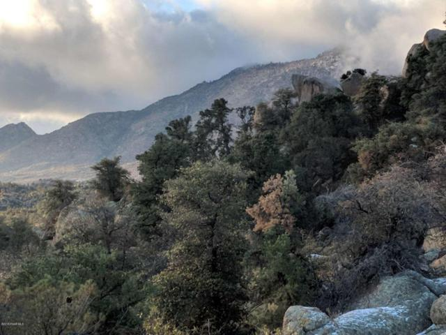 0 Cougar Canyon Road, Prescott, AZ 86305 (#1009838) :: The Kingsbury Group