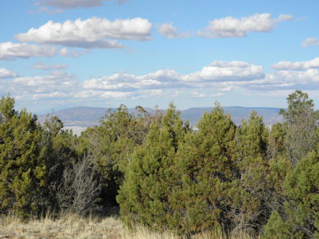 0 Spruce Mountain Road, Prescott, AZ 86303 (#1010449) :: The Kingsbury Group